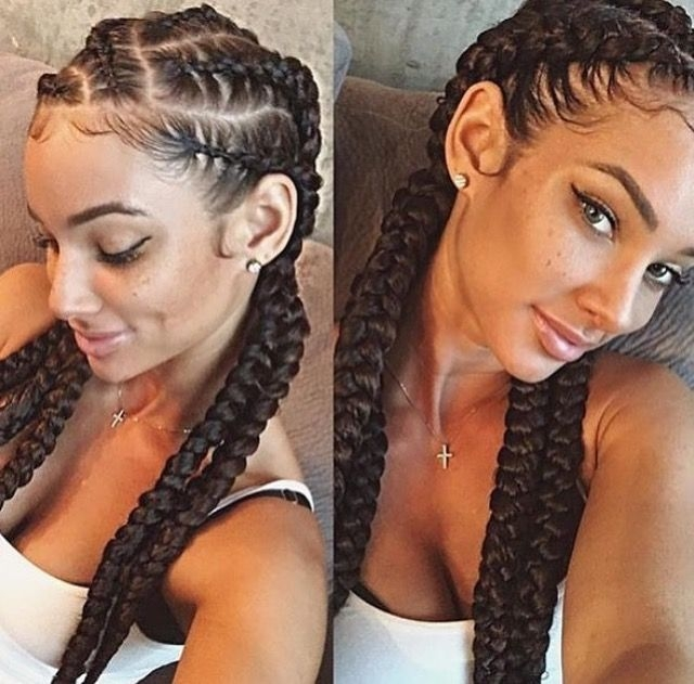 Awesome braids natural curly hair shrinkage team natural curls Braided Hairstyles For Naturally Curly Hair Ideas