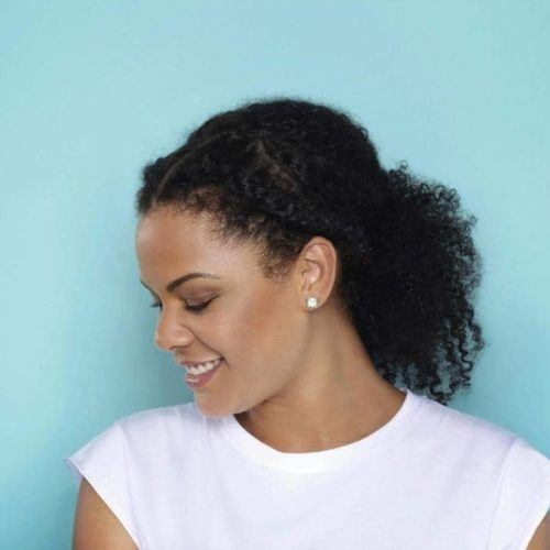 Best 56 best natural hairstyles and haircuts for black women in 2020 Natural African American Hairstyles Pictures Designs