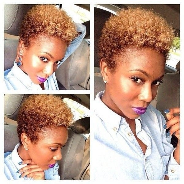 Best pin on hair Short Hairstyles For African American Natural Hair