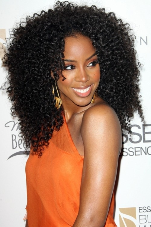 Cozy afro hairstyles for women exuberant spirals incredible African American Afro Hairstyles Ideas