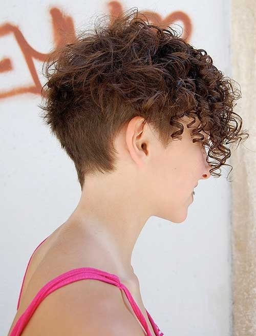 Fresh short hairstyles for curly frizzy hair Short Haircuts For Thick Curly Frizzy Hair Inspirations