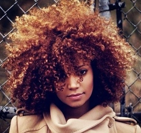 Trend lush and beautiful color curly hair styles curly hair All Natural Hair Dye For African American Hair Ideas