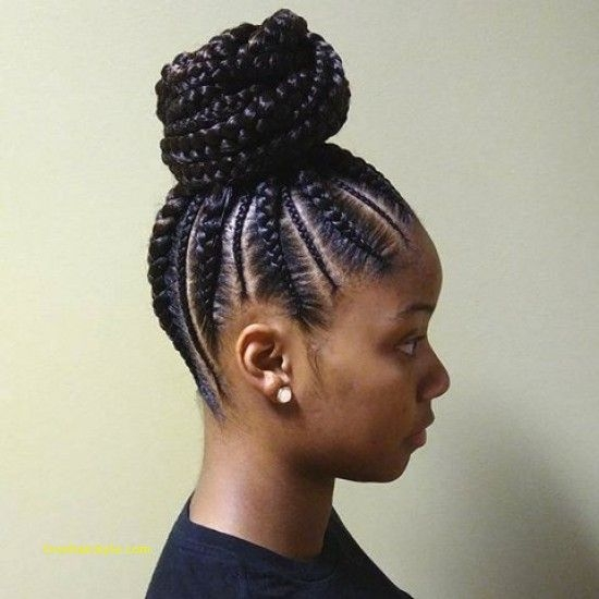 unique braided straight up hairstyles natural hair styles Straight Up Braided Hairstyles Choices