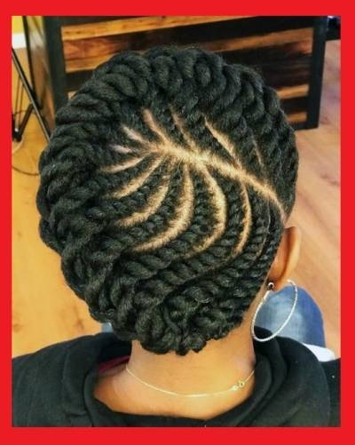 21 protective styles for natural hair braids Natural Hair Braided Styles Ideas
