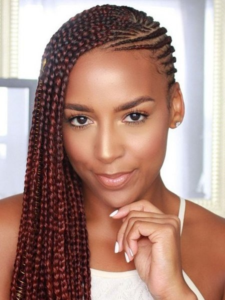 27 sexy lemonade braids inspired beyonc the trend spotter Side Cornrows Hairstyles