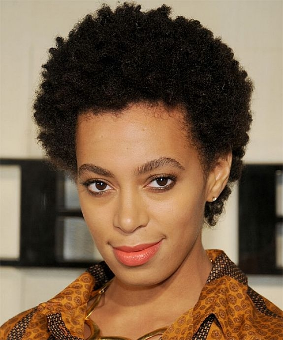 50 best short black curly hairstyles 2020 cruckers Short Curly Hairstyles African American Ideas