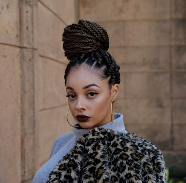 51 best jumbo box braids styles to try with trending images Jumbo Box Braids Hairstyles Tumblr Inspirations