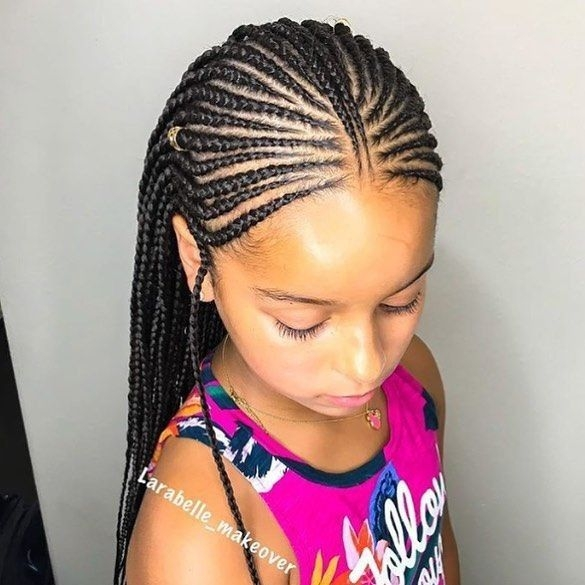 Awesome 35 amazing natural hairstyles for little black girls hair Little Black Girl Braided Hairstyles Choices