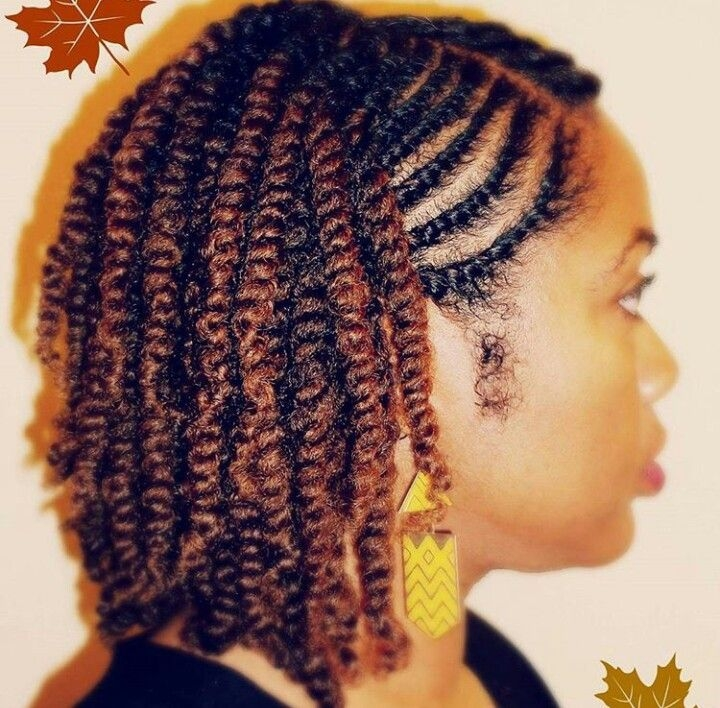 Cozy natural twostrand twist side view natural hair styles African American Twist Hairstyle Ideas
