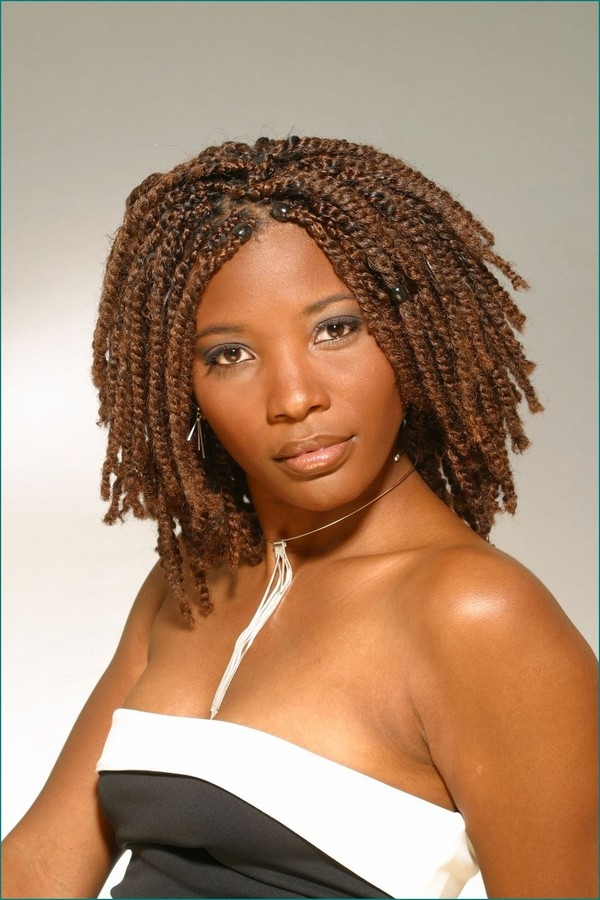 Elegant 67 best african hair braiding styles for women with images Braids For African Americans Designs