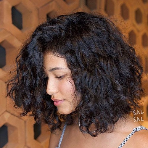 Elegant short thick curly hair cabelo 2b cabelo bonito cabelo 3a Short Hairstyles For Thick Naturally Curly Hair Ideas