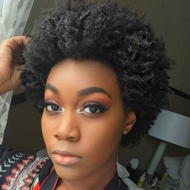 Fresh 75 most inspiring natural hairstyles for short hair Hairstyles For Afro Short Hair Ideas