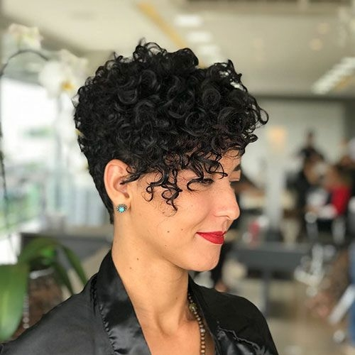 Stylish short curly pixie haircuts curly pixie hairstyles curly Short Curly Haircuts Inspirations