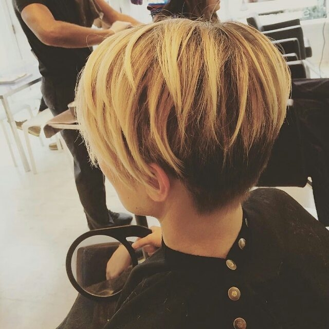Trend 23 chic pixie cut ideas popular short hairstyles for women Short Haircut Styles Back View Ideas