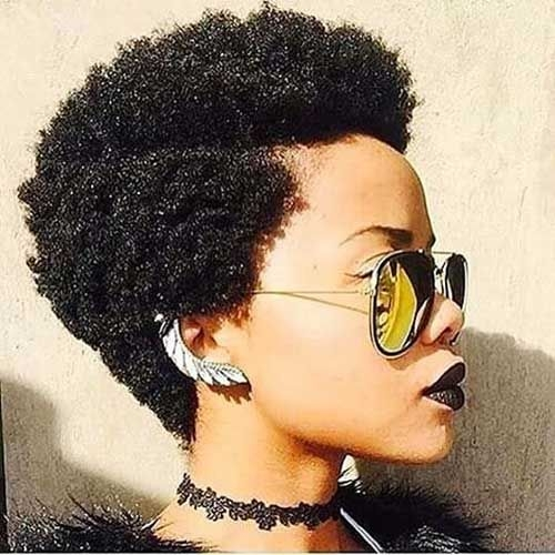 Trend hairiz short afro hairstyles short natural hair Hairstyles For Afro Short Hair Inspirations