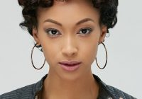 Elegant 30 easy hairstyles for short curly hair the trend spotter Short Hairstyles For Thick Naturally Curly Hair Ideas