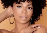 Stylish 30 stylish short hairstyles for black women the trend spotter Afro Short Hair Styles Ideas