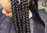 Stylish 50 long box braids master collection new natural African American Big Braids Hairstyles Designs