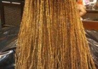 Stylish colored sisterlocks albanygasisterlocks sisterlocks African Hair Braiding Albany Ga Choices