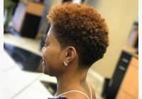 Stylish pin on protective styles Short Hair Styles Natural Ideas