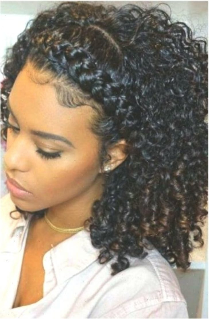 Permalink to New Hairstyles For Naturally Curly African American Hair Inspirations